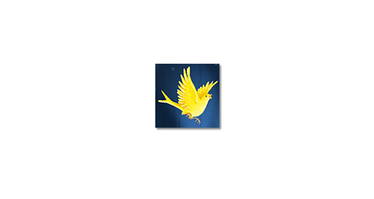 bird-95.jpg